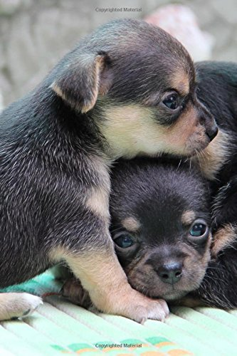 Read Online Cute Baby Chihuahua Puppies Pet Journal: 150 Page Lined Notebook/Diary pdf epub