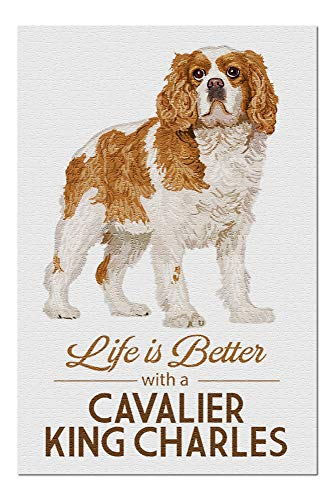 Cavaliers Wall Framed (Cavalier King Charles - Life is Better - White Background (20x30 Premium 1000 Piece Jigsaw Puzzle, Made in USA!))