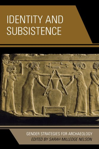 Identity and Subsistence: Gender Strategies for Archaeology (Gender and Archaeology)