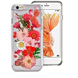 Case for Iphone 6S,Fifine Iphone 6s case ,Real Pressed Colorful Flowers Phone Case for Iphone 6/6S 4.7