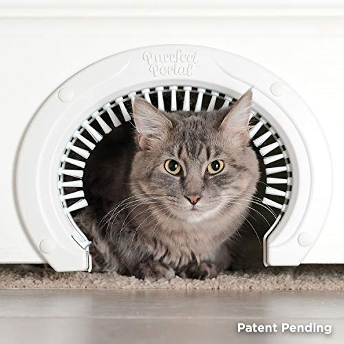 Cat Door for Interior Doors with Grooming Brush :: Large Pet Cat Pass for Adult Cats up to 20 Lbs :: Easy to Install Cat Door with Brush w/ Detailed Instructions Plus Screws & Screw Caps, White