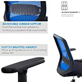 Mesh Office Chair, IntimaTe WM Heart Comfortable Ergonomic Midback Home Office Swivel Computer Desk Chair with Lumbar Support and Adjustable Armrest