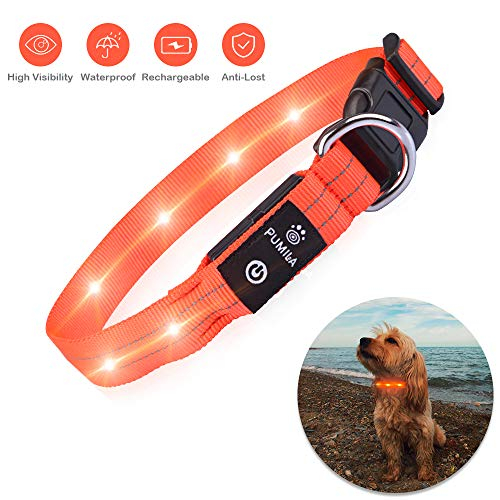 LED Dog Collar – Rechargeable Light Up Safety Pet Collar – Waterproof Flashing Light Up Dog Collar, Basic Dog Collars