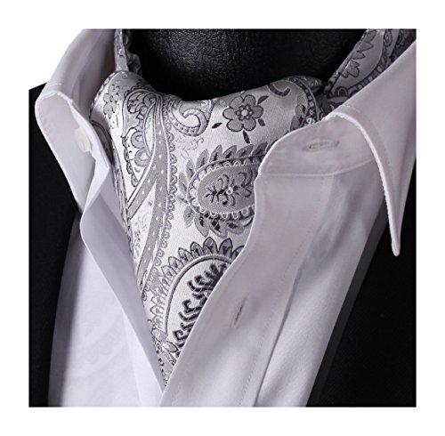 (HISDERN Men's Paisley Jacquard Woven Self Cravat Tie Ascot Gray/Silver)