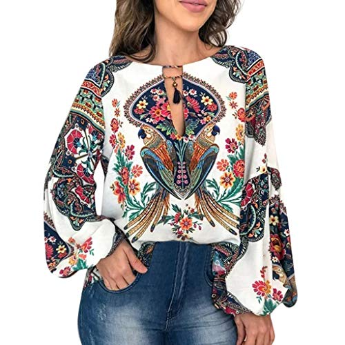 - LYN Star✨ Women Long Sleeve V Neck Hollow Out Floral Print Shirt Tops Long Blouse Tee Boho Tops Tie Neck Embroidered White