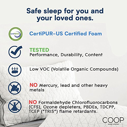 Coop family home Goods Eden Shredded remembrance memory foam Pillow as a result of Cooling Zippered Cover and changeable Hypoallergenic Gel Infused remembrance memory foam Fill Queen