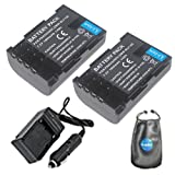 Amsahr S-BLF19-2CT Digital Replacement Battery Plus Travel Charger for Panasonic DMW-BLF19 with Lens Accessories Pouch, Pack of 2 (Gray)