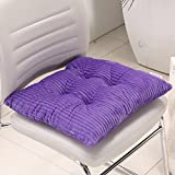 """[HISY UPDATE]Chair Pad And Cushion ,Fashion Indoor Home Kitchen Office Chair Pads Seat Pads Cushion Chair Pad Dining Chair Purple 2 Packs 15""""x15""""x2""""/piece"""