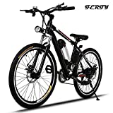 Ferty 2017 New Electric Mountain Bicycle Removable Battery (Small Image)