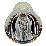 Kingoo Replace Bulb EC.J9900.001 Fo