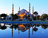 The Blue Mosque in Istanbul 8x10 Photo