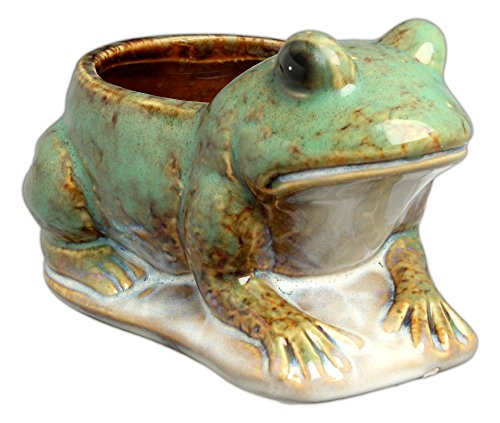 "Purchase low price Hill' Park' . "" Frog Planter - Holds Pot"