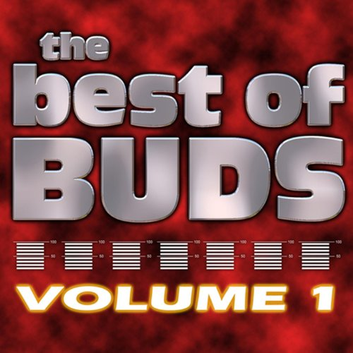 The Best of Buds Vol One [Explicit]
