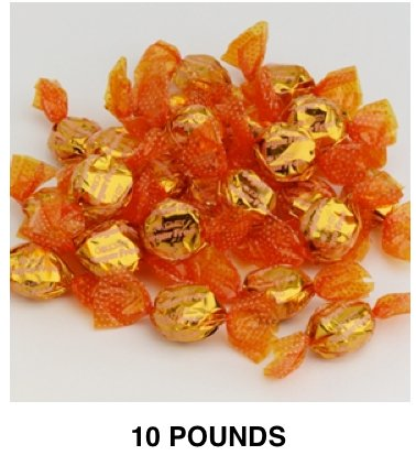 Golightly BUTTERSCOTCH Hard Candy, 10 lb, Sugar Free, Individually wrapped (about 1200 pcs) by GoLightly