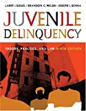 Juvenile Delinquency : Theory, Practice and Law, Siegel, Larry J. and Welsh, Brandon C., 0534645666