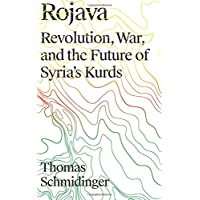 Rojava: Revolution, War, and the Future of Syria's Kurds