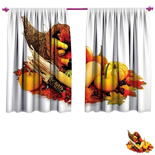 - Harvest Waterproof Window Curtain Thanksgiving Photograph with Butternut Squash Pumpkin Corn Cornucopia Decorative Curtains for Living Room W55 x L63 Vermilion Orange Brown