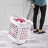 Sterilite 12248004 Laundry Basket, 62