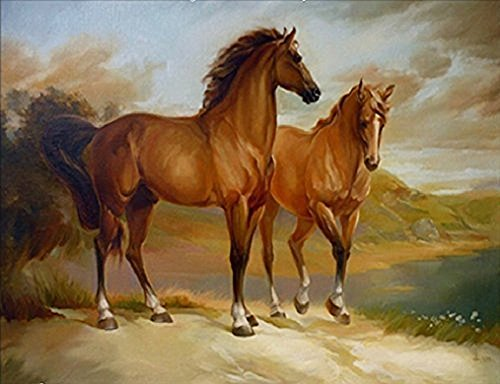 JynXos Wooden Framed Paint By Number Horse Linen Canvas DIY Painting - Horse Couple