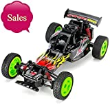 SUBOTECH Electric RC Car 1:16 Scale 2.4GHz Off Road Vehicle Remote Control Car Off Road Karting RC Car High Speed Racing 2.4GHz 50M Fast Rock Off Road Car with Light