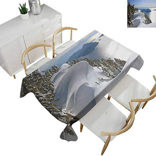 Winter,Tablecloth Rectangular Pacific Ocean Meets The Mountains Vancouver British Columbia Canada Patterned Tablecloth White Olive Green Blue 54