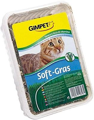 Gimcat Soft-Gras hierba para gatos