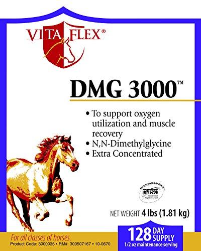 Vita Flex DMG 3000 Concentrate, 128 Day Supply, 4 lbs by Vita Flex (Image #1)