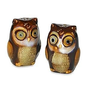 Natures Owl 2 PC Salt & Pepper Shaker Set~Brown