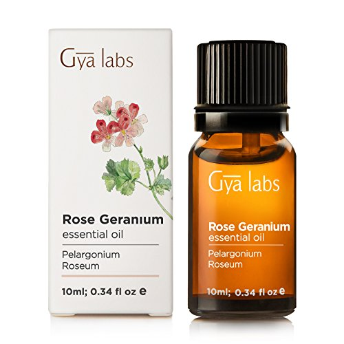 Rose Geranium Essential Oil 10 ml - 100% Pure, Undiluted, Natural & Therapeutic Grade for Aromatherapy, Skin and Relaxation - Gya Labs