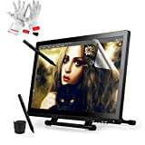 Ugee UG-2150 21.5 Inch IPS Screen Pen Tablet Monitor Pen Display with 2 Original Pens, 2 USB Cables and Pergear Clean Kit