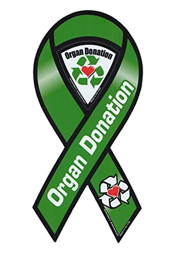 8 Little Organ - Magnetic Bumper Sticker - Organ Donation (Donor) - Ribbon Shaped Support Magnet - 4