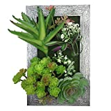 PietyDeko 3D Frames Artificial Succulent Arrangement Tabletop Decoration or Wall Mounted Sculptures Green