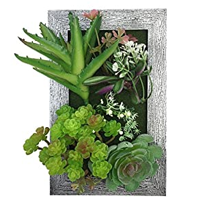 PietyDeko 3D Frames Artificial Succulent Arrangement Tabletop Decoration or Wall Mounted Sculptures Green 52