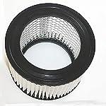 Einhell 235165001019 - Filtro di ricambio per TC-AV 1200 W, in carta metallizzata 51wYR5A8YnL. SS150