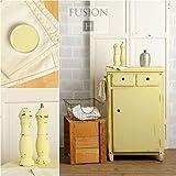 Fusion Paint (Aubusson)