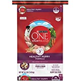 Purina ONE SmartBlend Natural Healthy Puppy Formula Dry Dog Food - 16.5 lb. Bag