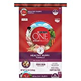 #6: Purina ONE SmartBlend Healthy Puppy Formula Dry Dog Food