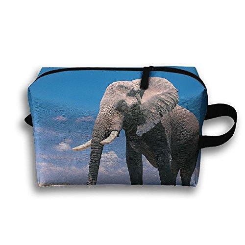 Elephant Animal Natural Scenery Sky Travel / Home Use Storage Bag, Carts Storage Space, Foldable Portfolio Bags, Organizers Basket Set by JIEOTMYQ