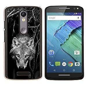 Tame Salvaje Perro Lobo Negro Blanco canina- Metal de aluminio y de plástico duro Caja del teléfono - Negro - Motorola Droid Turbo 2 / Moto X Force