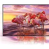 Samsung QN65QN800AFXZA 65 Inch Neo QLED 8K Smart TV