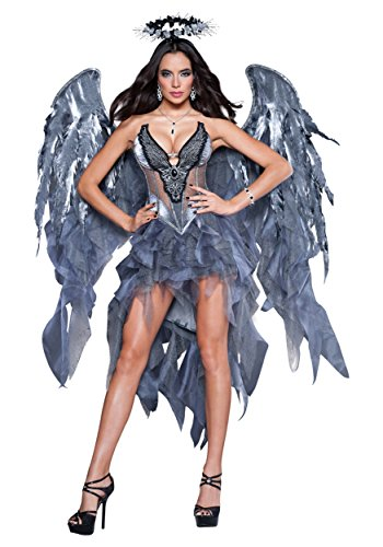 InCharacter Costumes Women's Dark Angel's Desire Costume, Grey/Silver, - Costumes Devil Women For Sexy