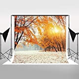 Kate Photography Backdrops 7x5ft Sunshine Winter Scenic Maple Leaves Tree Cotton No Wrinkles Collapsible Background Photo Backdrop for Photographers