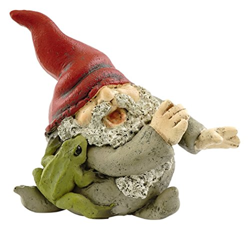Top Collection Miniature Fairy Garden and Terrarium Gnome Playing with Frog Figurine