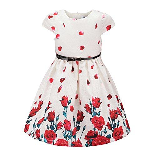 childdkivy Girls Floral Party Dress Princess Dresses for Kids Roses Pattern Size 5-6 (Sleeve Dress Brocade)