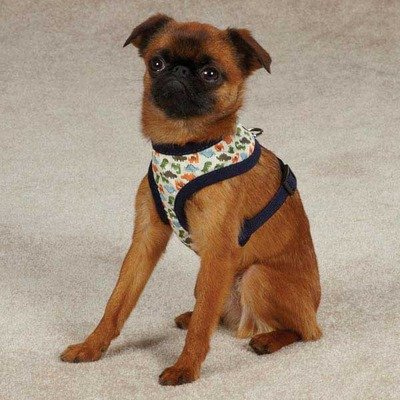 Casual Canine ZA3903 20 19 Dino Dog Harness, Large, Navy