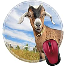 Liili Round Mouse Pad Natural Rubber Mousepad IMAGE ID: 2997371 Young goat in pasture of small farm