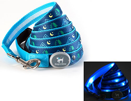 Light Up LED Dog Leash made our CampingForFoodies hand-selected list of 100+ Camping Stocking Stuffers For RV And Tent Campers!