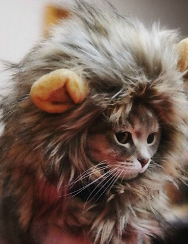 [USXY Pet Costume Lion Mane Wig Hat for Dog Cat Halloween] (Star Wars Halloween Costumes For Dogs)
