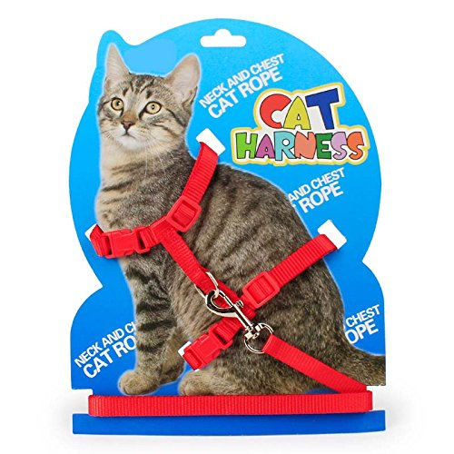 Cat Harness Nylon Strap Collar H Cat Harness Leash Set for Small Cat Pet Walking Kitten Nylon Strap Belt Safety Rope Leads Red (Red) ()