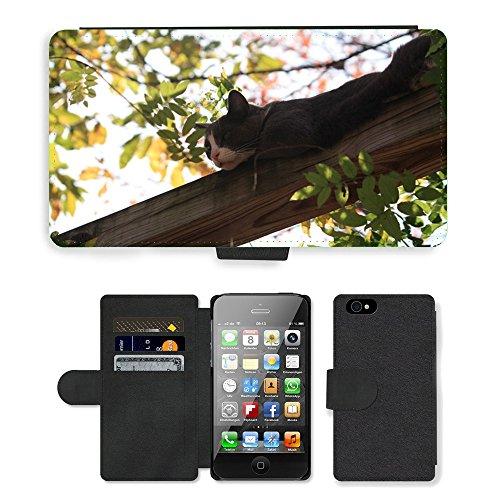 Just Phone Cases PU Leather Flip Custodia Protettiva Case Cover per // M00128279 Cat arboricoles Adorable Sans // Apple iPhone 4 4S 4G